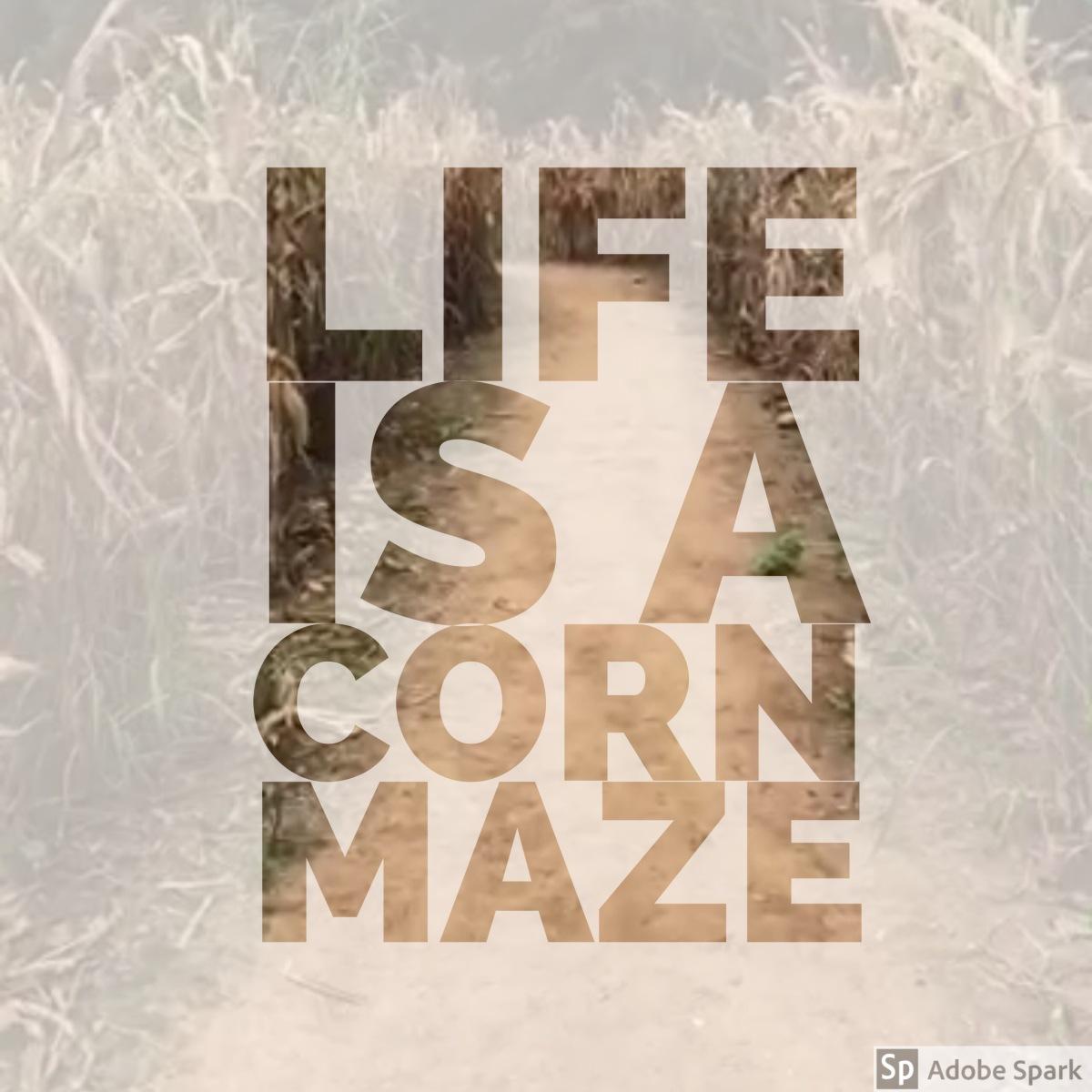 Life is a CornMaze