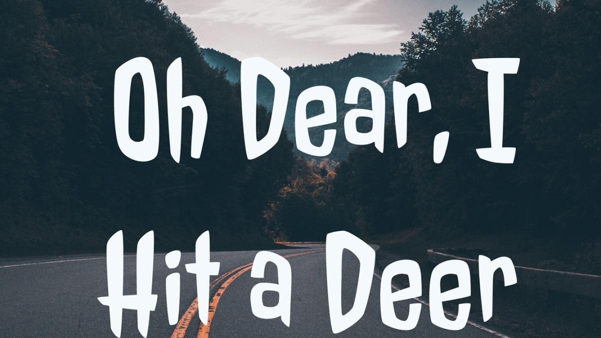 Oh Dear, I Hit aDeer