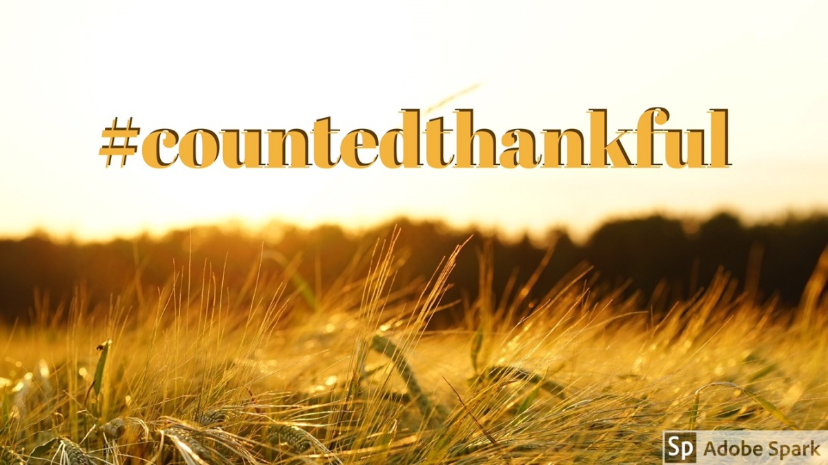 #countedthankful – Day4