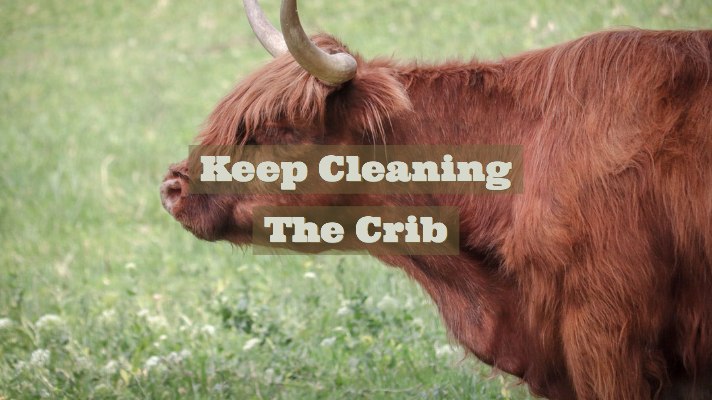 Keep Cleaning The Crib
