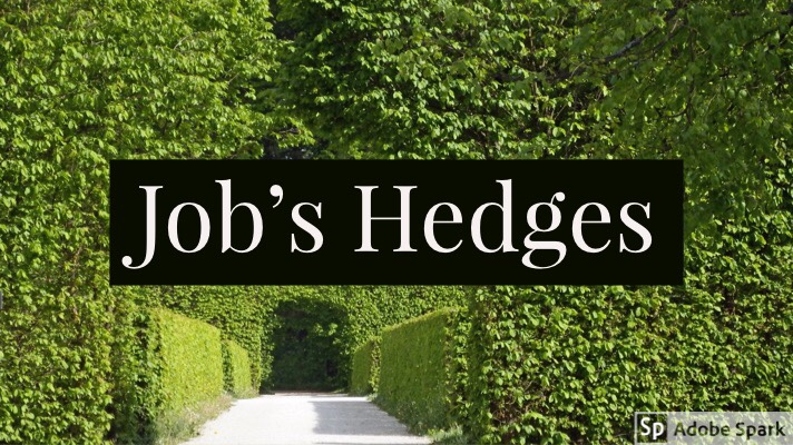 Bible Reading Thoughts – Job's Hedge